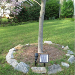 12 LEDs Commercial Grade Solar Spot Light SGG-12 Tree
