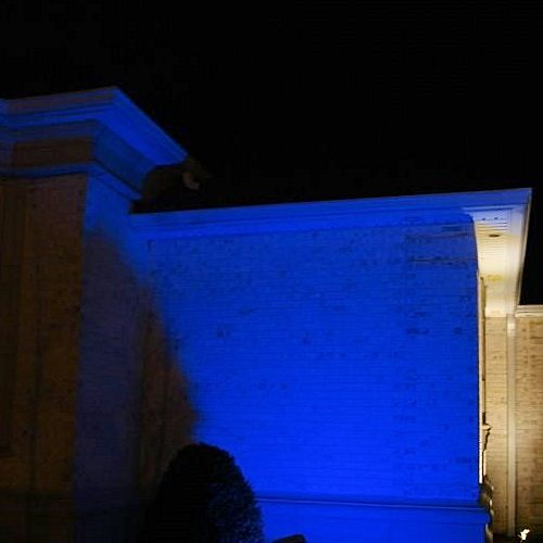 Commercial Grade Color Changing Solar Flood Light